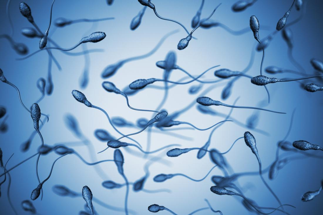 How long can sperm survive outside body