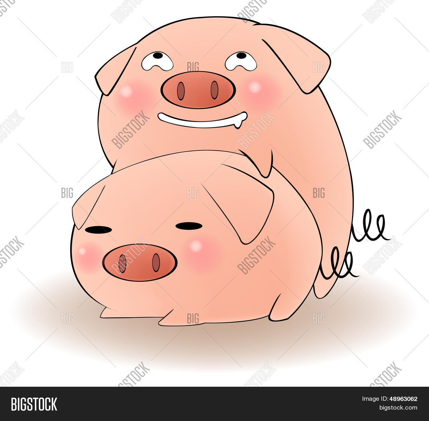 Is it safe haveing sex a pig