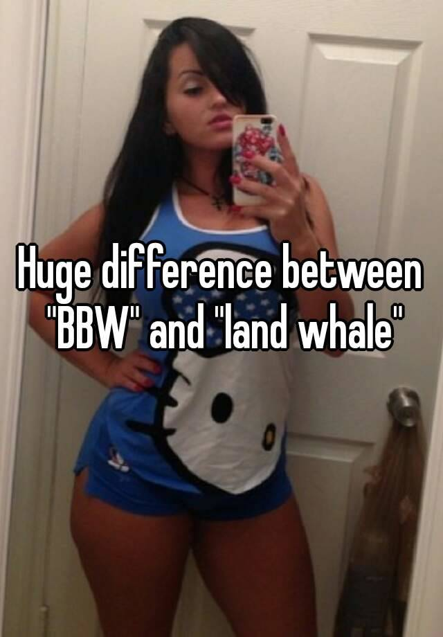 Whats the difference between bbw and big