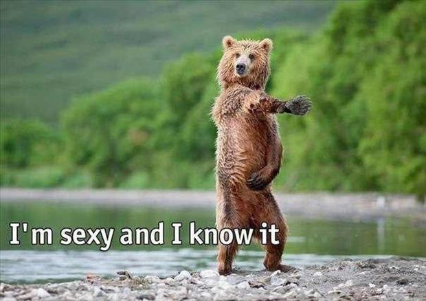 Im sexy and i know i u