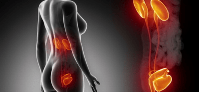 Symptoms of holding your pee too long