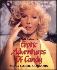 Gail palmer s erotic adventures of candy