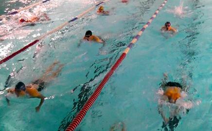 Cours de natation adulte paris pas cher