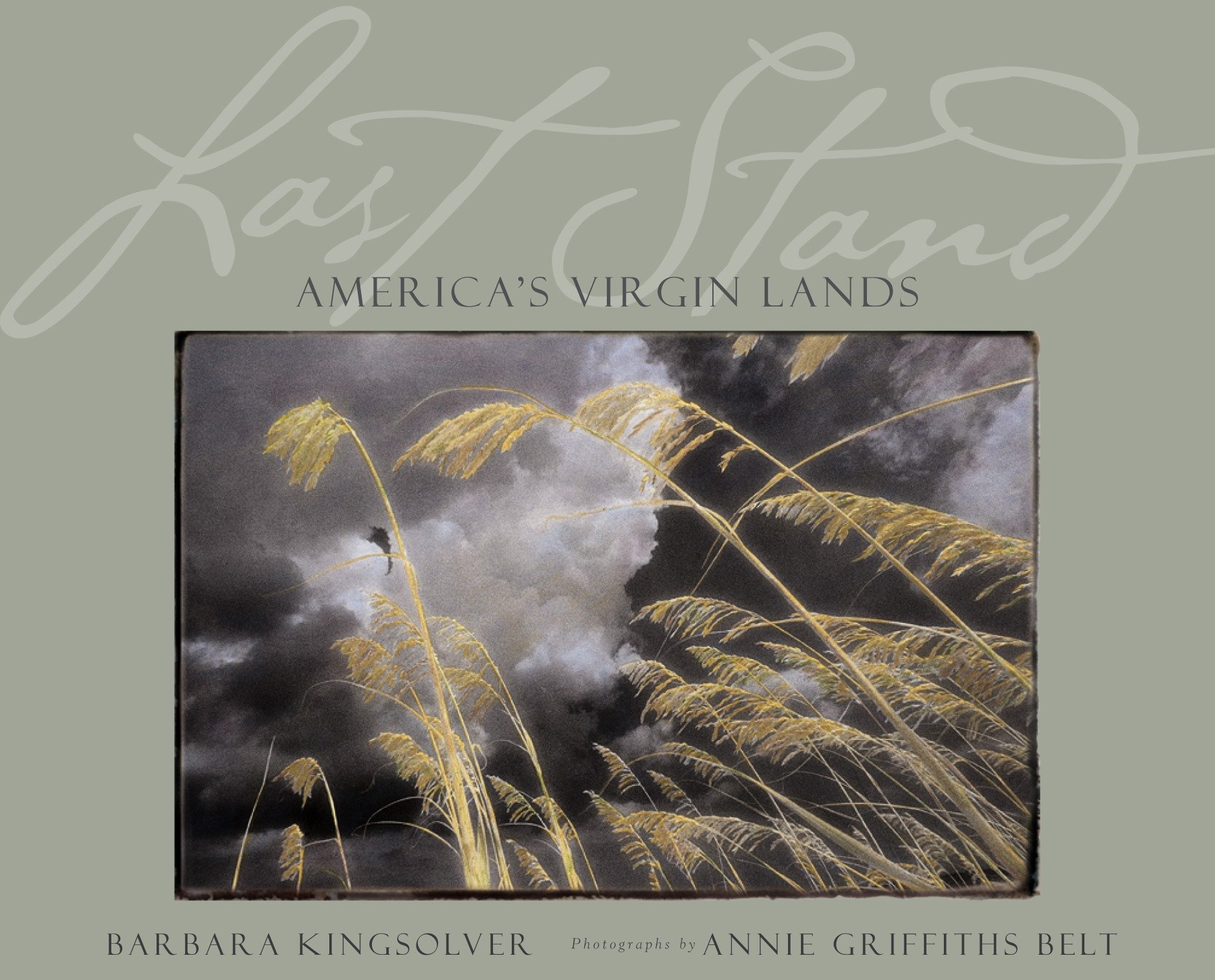 The last stand america s virgin lands
