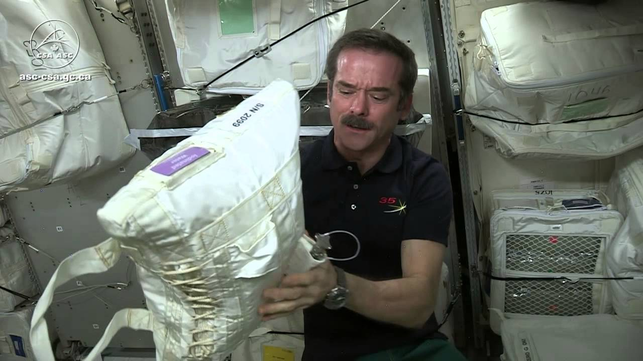 Has anyone ever had sex in space