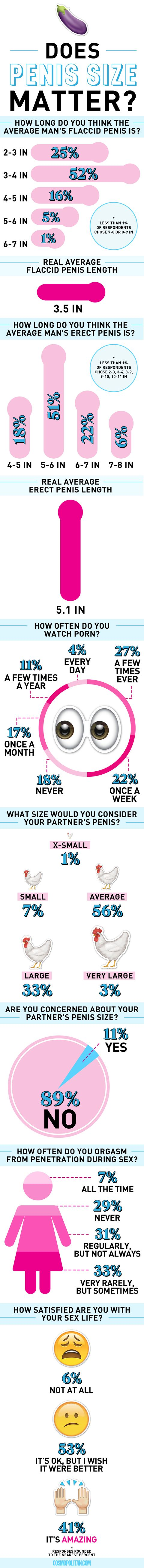 Women s thoughts on variuos penis sizes