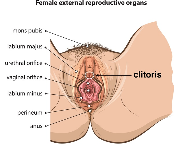 Best way to masturbate for a woman